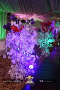 designers and decorators, events management company, thematic decor