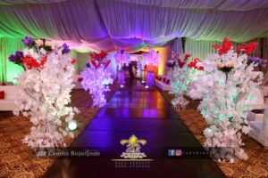 hall decor, decorators, walkway decor, wedding designers