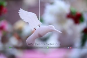 best photographers, photography company in lahore